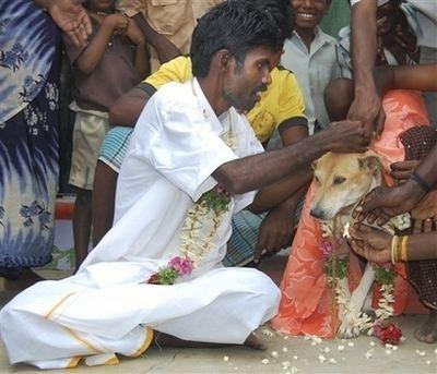 manmarriesdog.jpg